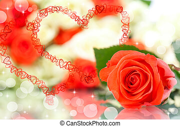 red rose on the abstract background