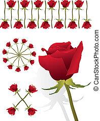 Red rose pattern set