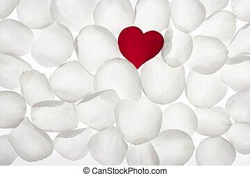 Red rose petal heart shape over white