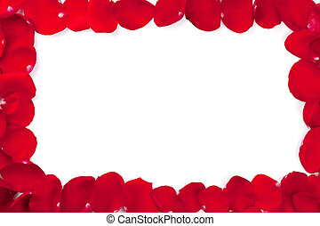 Red rose petals frame