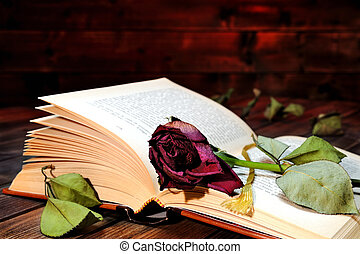 Red rose wilted through the pages of an old book yellowed by...
