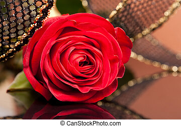 red rose with golden ribbon