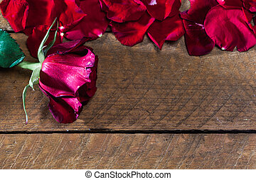 Red rose with petals, on wood board