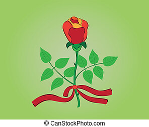 red rose with ribbon