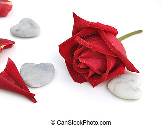 red rose with stone heart