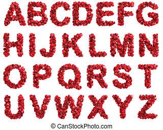 Red roses alphabet, isolated on white background