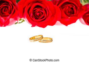 Red roses and wedding rings over white