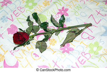 Red roses background valentines day