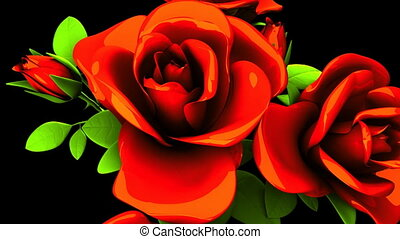 Red Roses Bouquet On Black Background. Loop able 3DCG render...