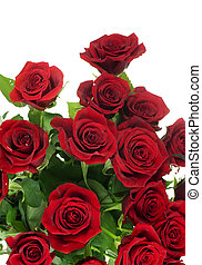 Red Roses bouquet over white