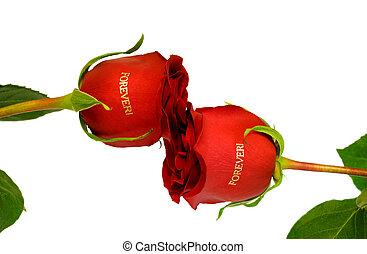 Red roses forever