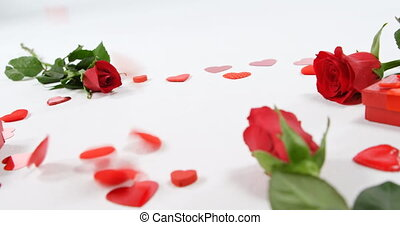 Red roses, gift box and falling hearts on white background 4k