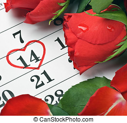 red roses lay on the calendar with the date of February 14 Valentine's day