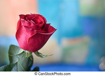 red roses on a colorful background.