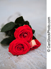 red roses on a wooden Board