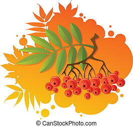 Red rowan on autumnal background
