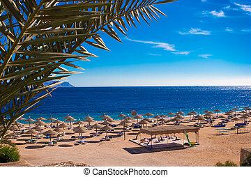 Red sea coast in Sharm el Sheikh