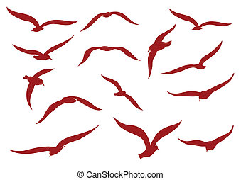 Red seagulls