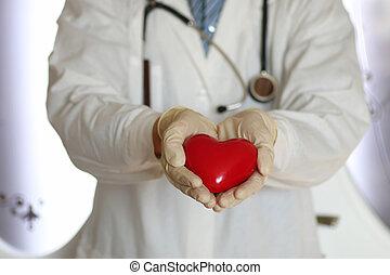 heart in doctor hand