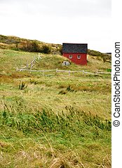 red shed in grassy field
