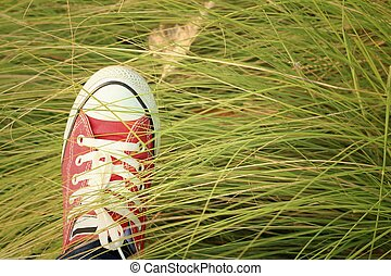 Red shoes with a background of green grass.