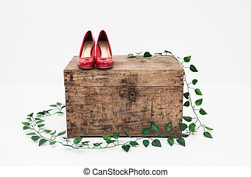 red shoes with box on a white background