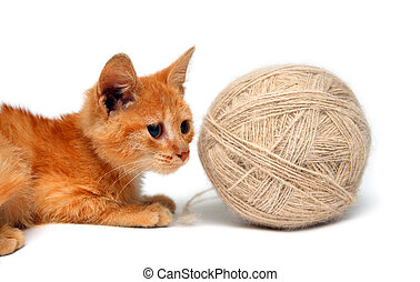 small cat and big clew of wool