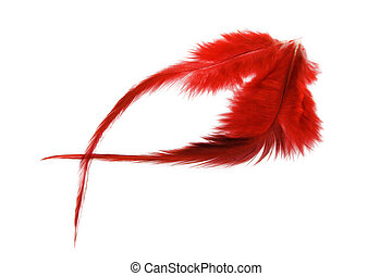 Red soft feathers