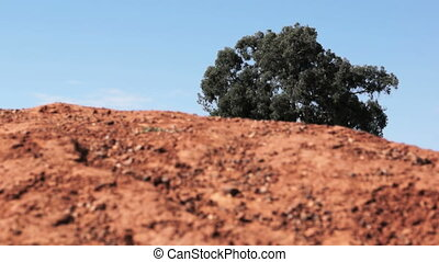 Red soil - Close up of laterite red soil in africa with...