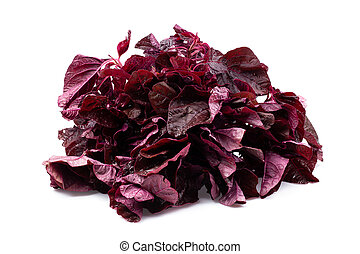 Red spinach leaves isolated on white background