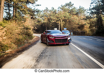 Red sport sedan on the forest road