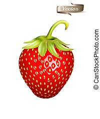 Red strawbery. Realistic 3d isolated vector.