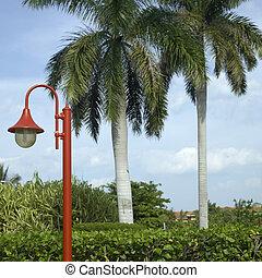 Red street light