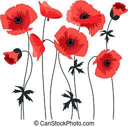 Red stylized poppy isolated on white background