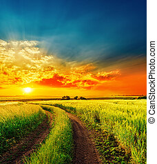 red sunset over green field with road