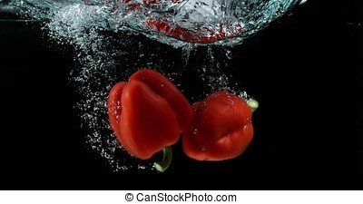 Red Sweet Pepper, capsicum annuum, Vegetable falling into Water against Black Background, Slow motion
