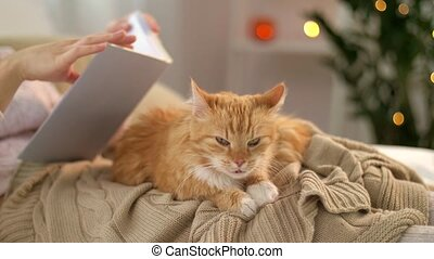 red tabby cat and woman reading book at home