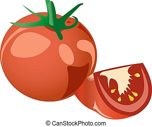 Red tomato. Vector illustration isolated on white background.