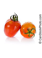 Red tomato with water drop on white background .