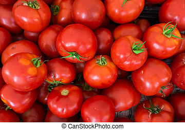 red tomatoes background. Group of tomatoes - red tomatoes...