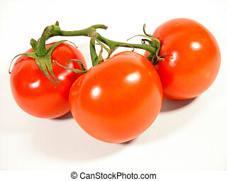 Red Tomatoes - Isolated red tomatos