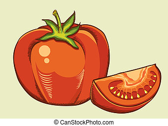 Red tomatos. Vector fresh vegetable isolated illustration