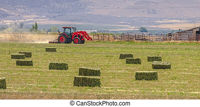 Red tractor and old barn on a field in Utah Valley