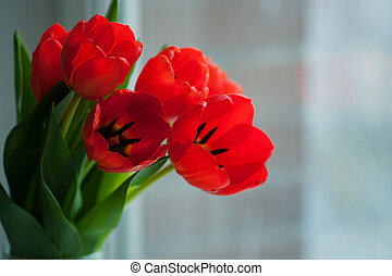 Red tulips bouquet over blur wooden background