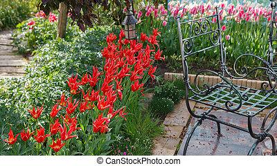 Red tulips flower in the garden