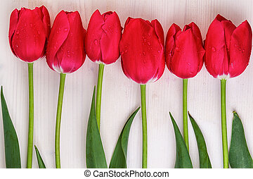 Red tulips in a row on wooden background