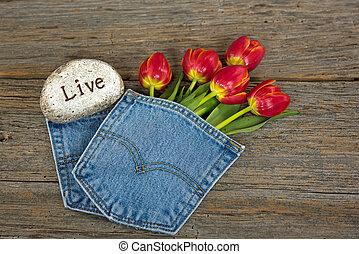 red tulips in denim pocket