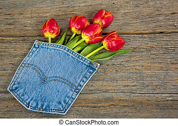 red tulips in pocket