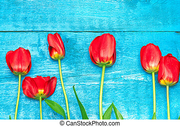 Red tulips on a blue boards