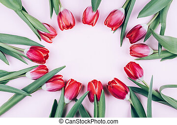 Red tulips on a pink background make room for text